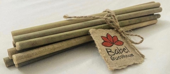 Bamboo straws Babel Guesthouse (2)